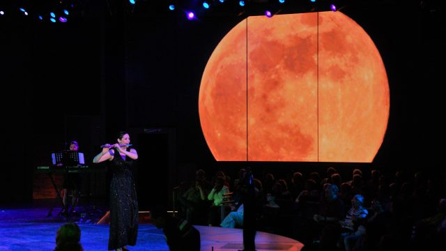 Andrea Amat performs on board M.S. Koningsdam
